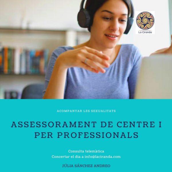 consulta professionals assessorament formació